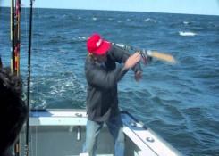 Pescas o haces el Tonto ?